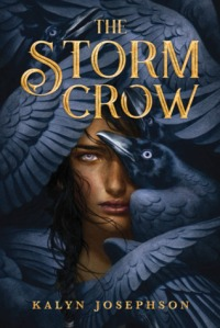 The Storm Crow by Kalyn Josephson